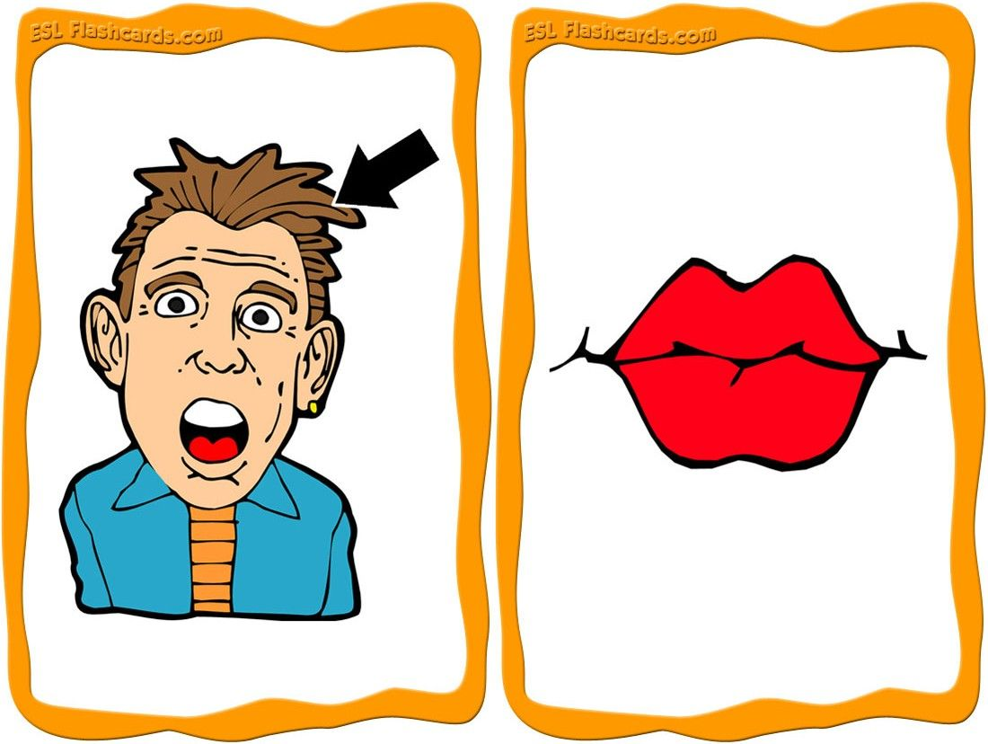 Sample Face Flashcards Kleuters
