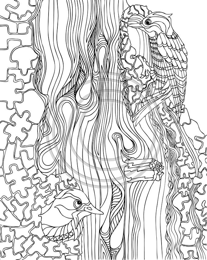 The Woodpeckers Coloring pages colouring adult detailed advanced printable Kleuren voor volwassenen coloriage pour adulte anti-stress kleurplaat voor volwassenen Line Art Black and White Zentangle
