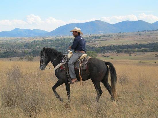 Photo Of Rancho Las Cascadas Riding Tours