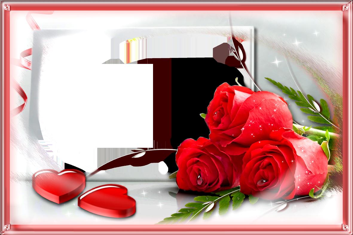 Love Frame With Red Png Rose Rose Frame Flower Frame Creative Flower Arrangements