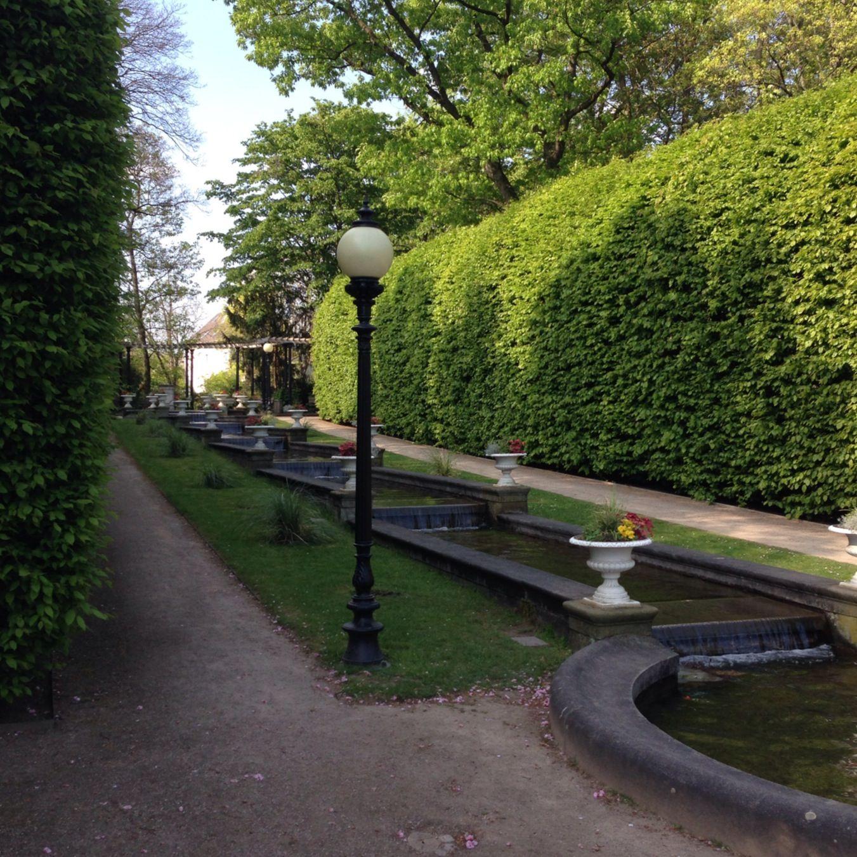 Wasserkaskade Botanischer Garten Flora Garten