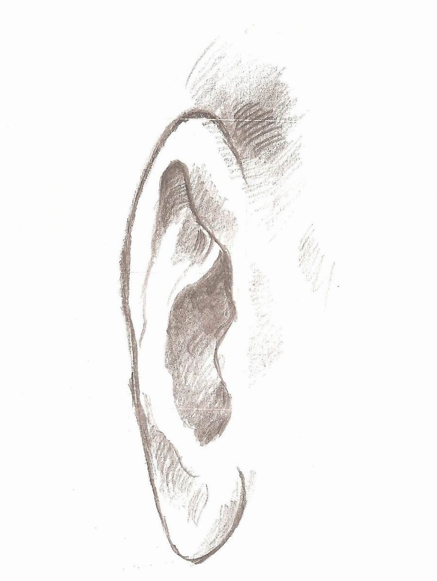 الاســـم Ear Drawing رسم الأذن Orfiles Com 10 Jpg المشاهدات 430 الحجـــم 77 0 كيلوبايت Disney Drawing Tutorial Disney Drawings Drawing Tutorial