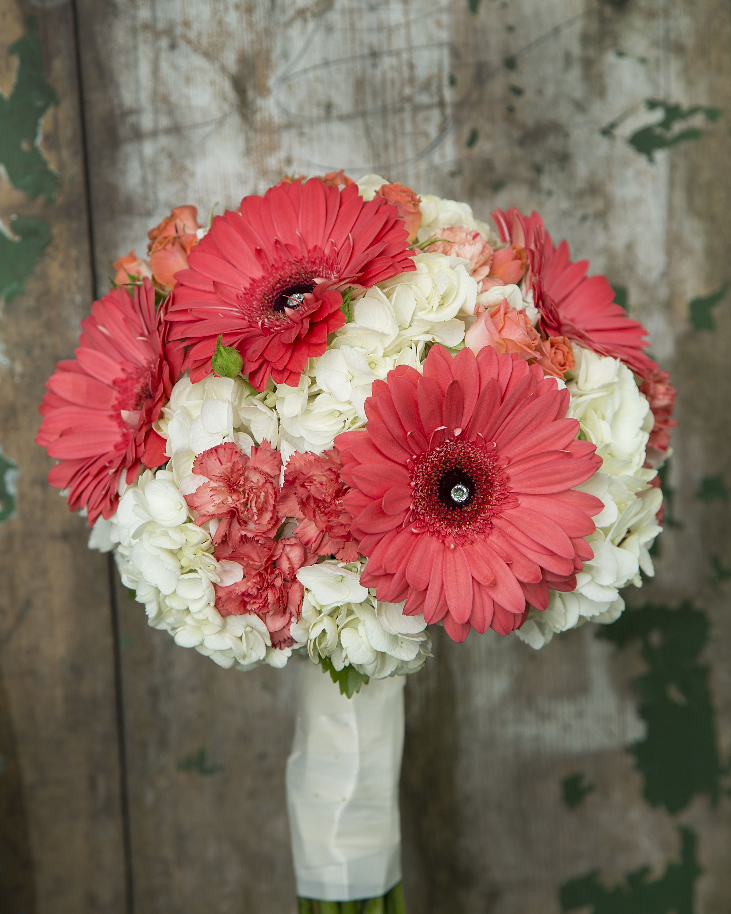 Coral gerbera, carnations and spray roses with a background of white hydrangea make up this stunning brides bouquet.