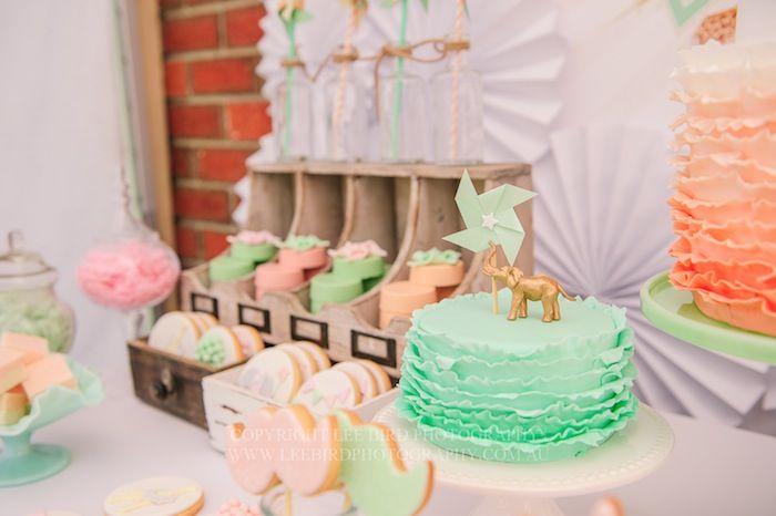 Vintage Peach Mint Circus Party Planning Ideas Decor Cake
