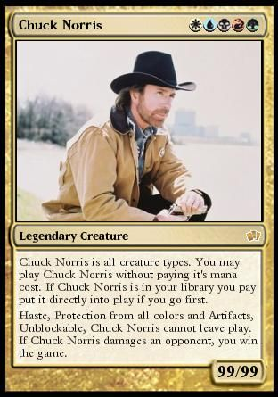 Chuck Norris | Truth | Chuck norris, Chuck norris memes