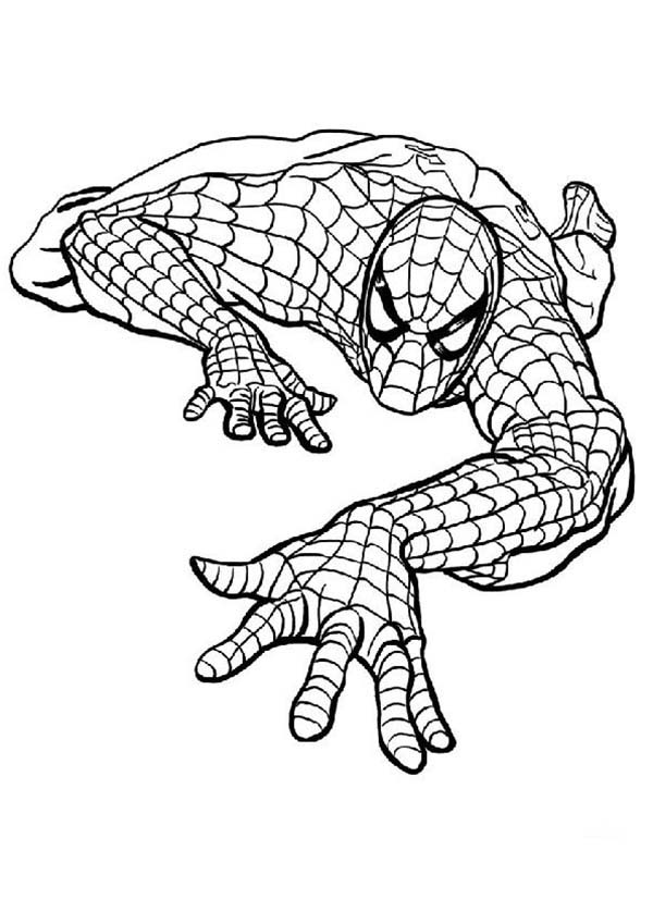 Picture Of Spiderman Coloring Page Coloring Sun Spiderman Coloring Spiderman Spiderman Stencil