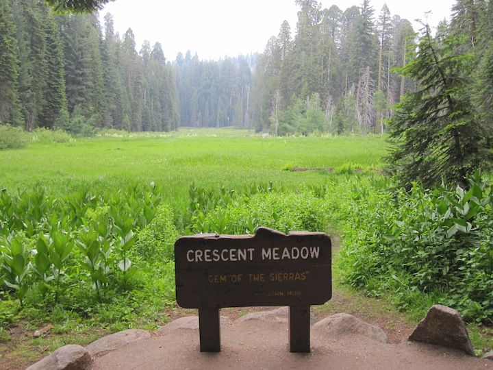 Crescent Meadow, Sequoia National Park, California ... on Sequoia Outdoor Living id=57302
