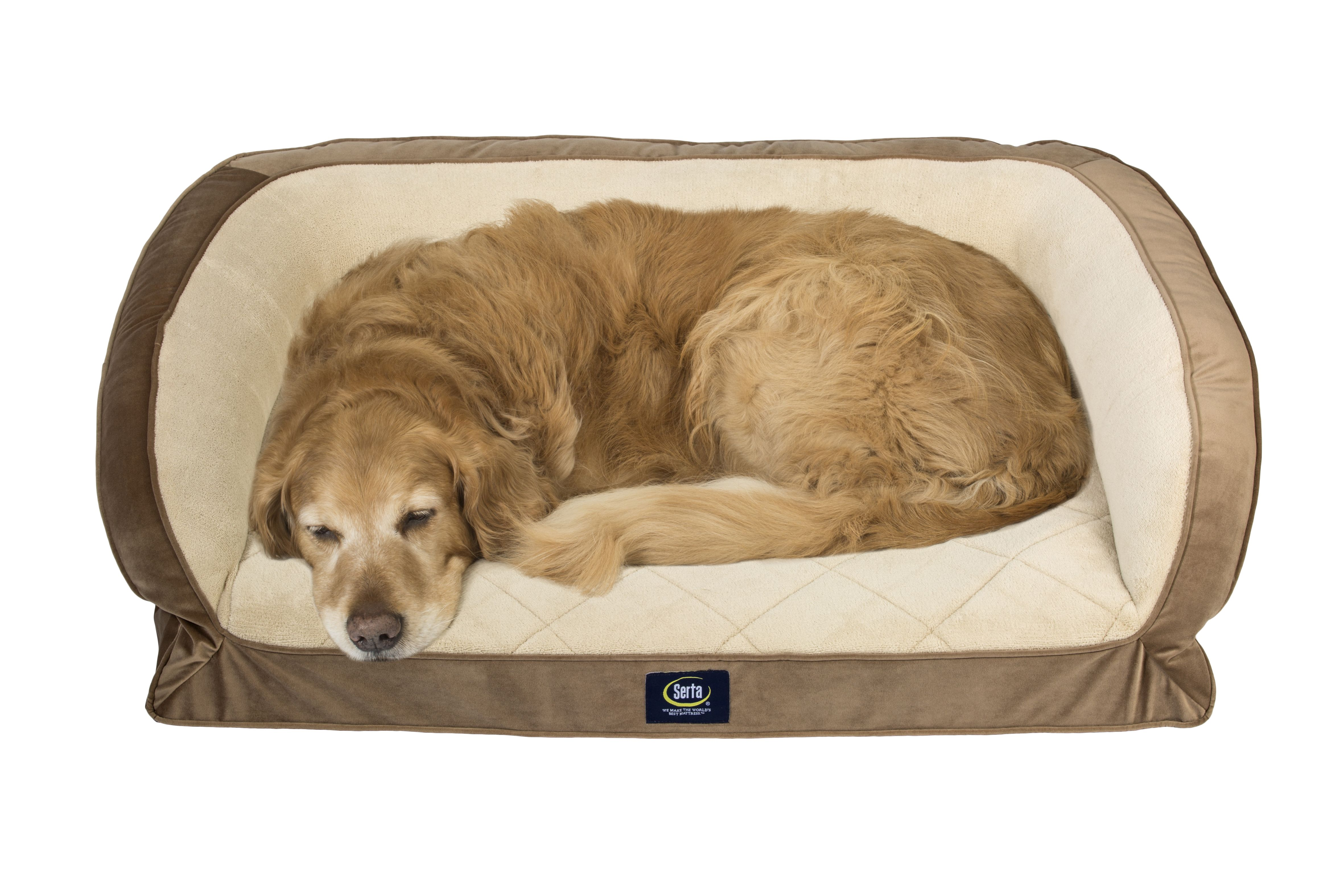 Serta Orthopedic Memory Foam Couch Pet Dog Bed Large Color May Vary Walmart Com Couch Pet Bed Dog Pet Beds Dog Bed