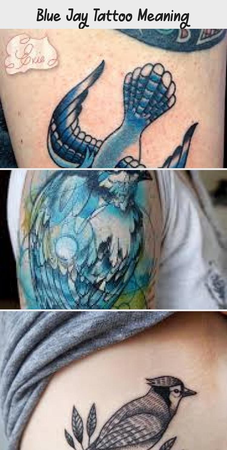 Blue Jay Tattoo Meaning Tattoos And Body Art In 2020 Blue Jay Tattoo Tattoos With Meaning Body Art Tattoos