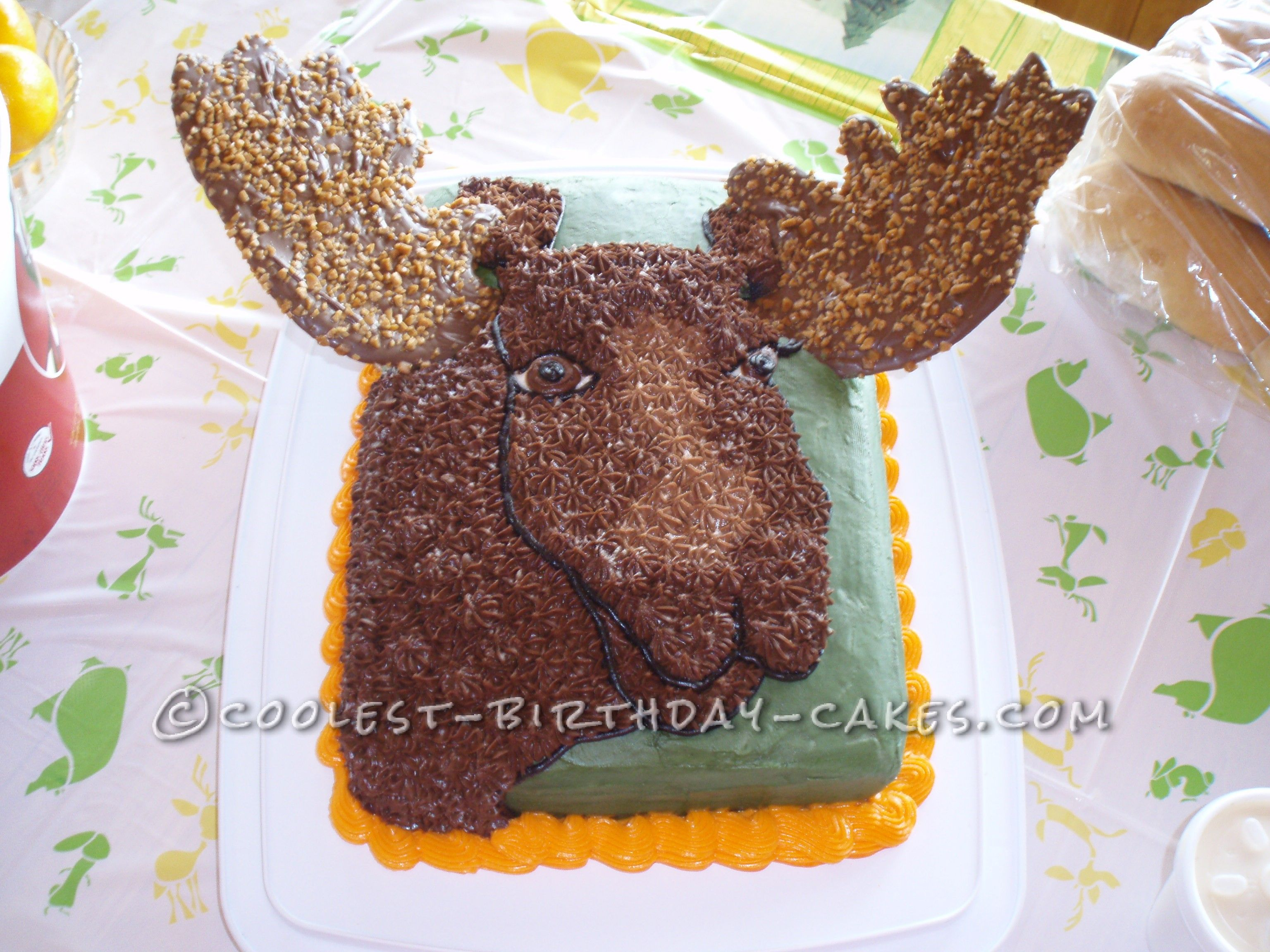 Groovy Moose Cake For The Mighty Hunter Moose Cake Cool Birthday Cakes Funny Birthday Cards Online Overcheapnameinfo