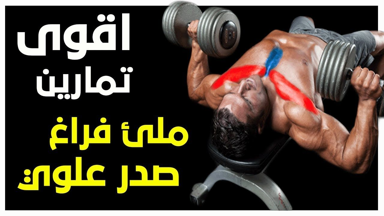 Pin En Lower Chest Workout
