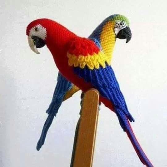 Loros de crochet | Pájaros de ganchillo, Amigurumi