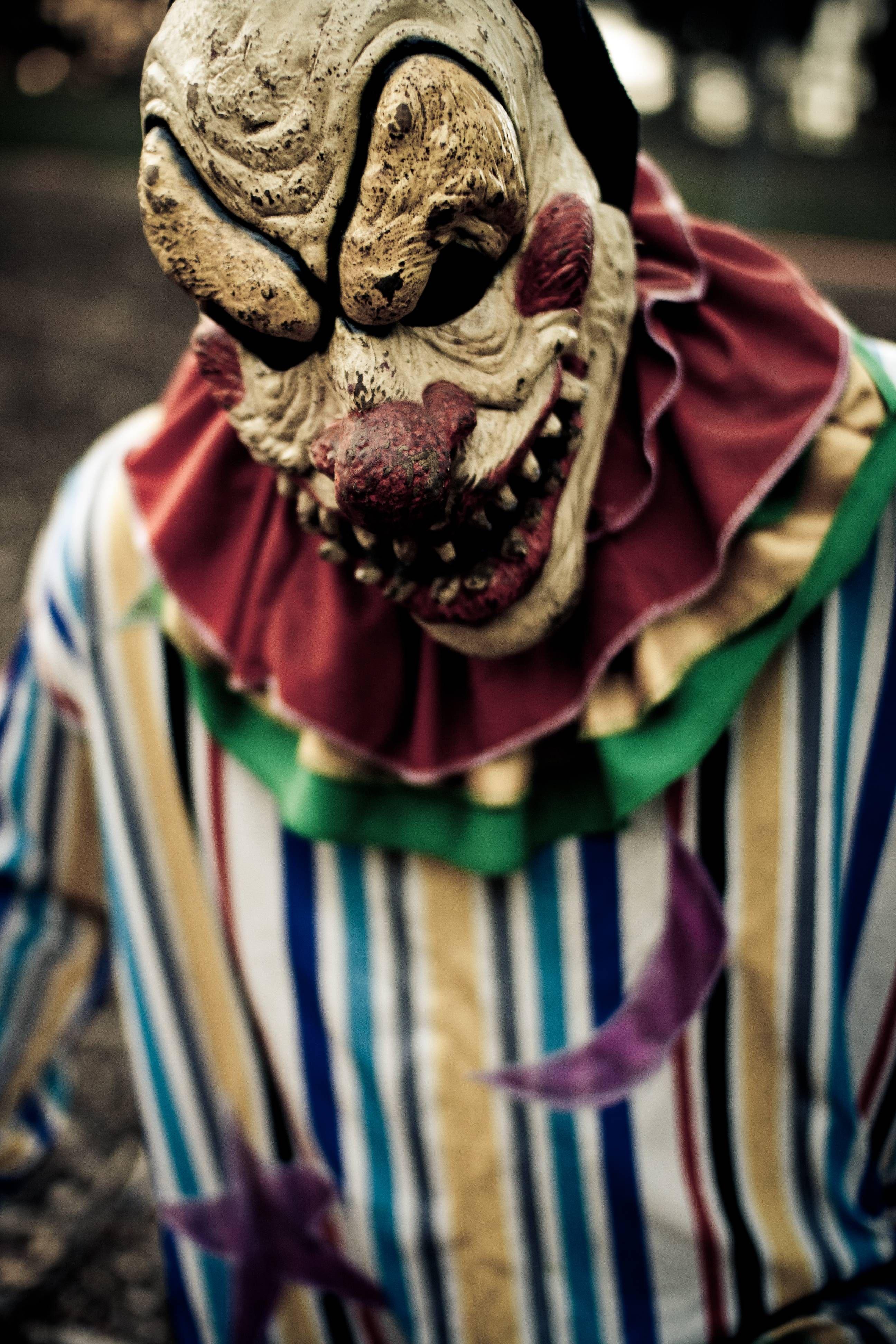 Halloween 2020 Balboa Park The Haunted Trail  Balboa Park | Halloween haunted house diy