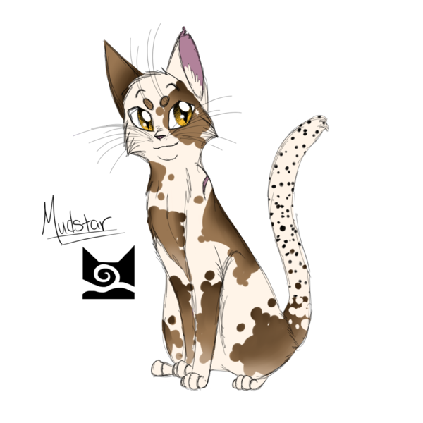 Warriors Erin Hunter Lost Stars: Mudpaw Or Willowbranch (willoebranch Is My Made Up She Cat
