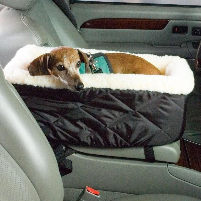 Car Bed Cute And Practical For Small Dogs Or Puppies Could Probably Make This Out Of A 31 Bag Dog Fluffy Blanket