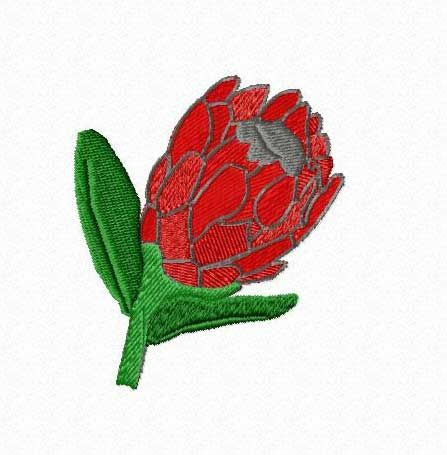 Embroidery Designsproteas Embroidery Designs South African