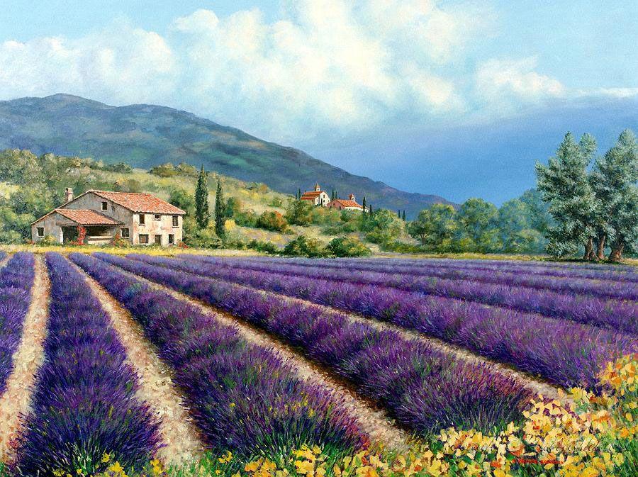 фото картин с лавандовым полем целиком отдается