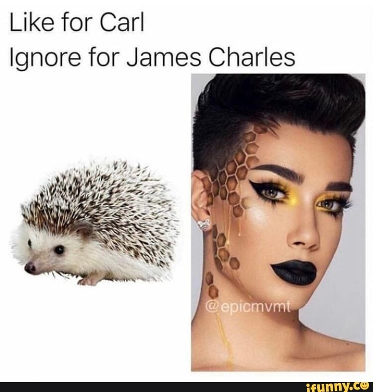 Like For Carl Ignore For James Charles Ifunny James Charles Charles Meme Charles