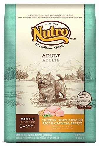 Nutro sensitive stomach dry dog food chicken brown rice and nutro sensitive stomach dry dog food chicken brown rice and oatmeal 30 lbs forumfinder Choice Image