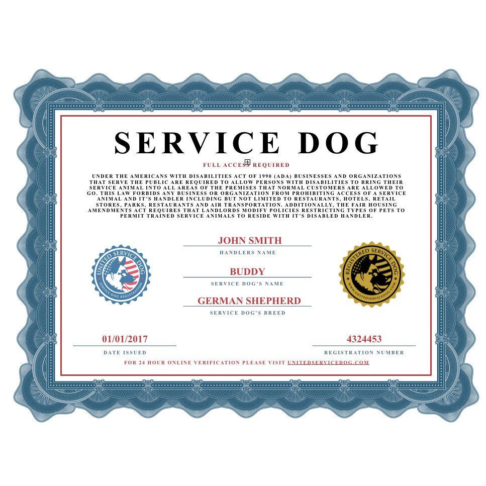 Service Dog Certificate Service dogs, Certificate