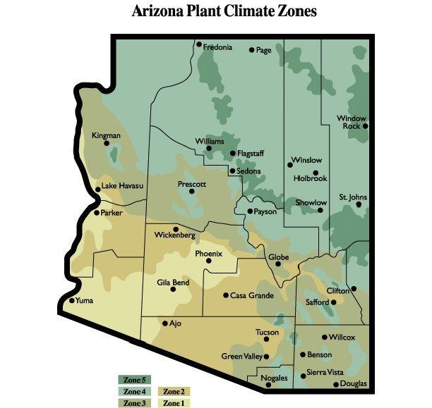 Map Of Arizona Regions.Arizona Plant Climate Regions Az Master Gardener Handbook