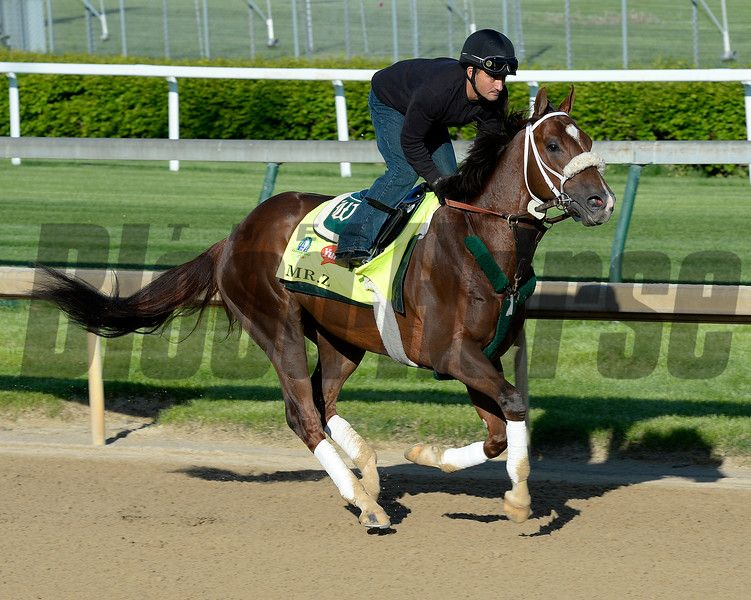 Caption: Mr. Z<br /> Horses on the track at Churchill Downs on Sun. April 27, 2015, in Louisville, Ky., in preparation for the Kentucky Derby and Kentucky Oaks.<br /> Works4_27_15 image864<br /> Photo by Anne M. Eberhardt