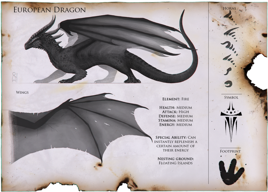 The most common dragon  It's some sort of counter part to the Wyvern