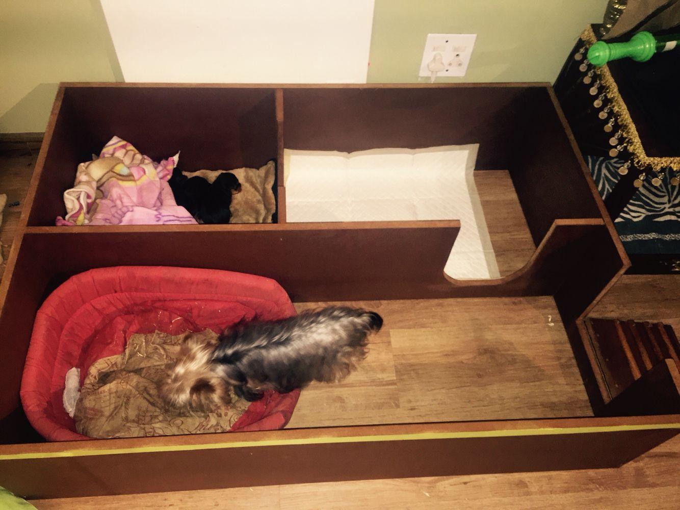 Whelping Box Play Pen Pets Pinterest Whelping Box Puppies