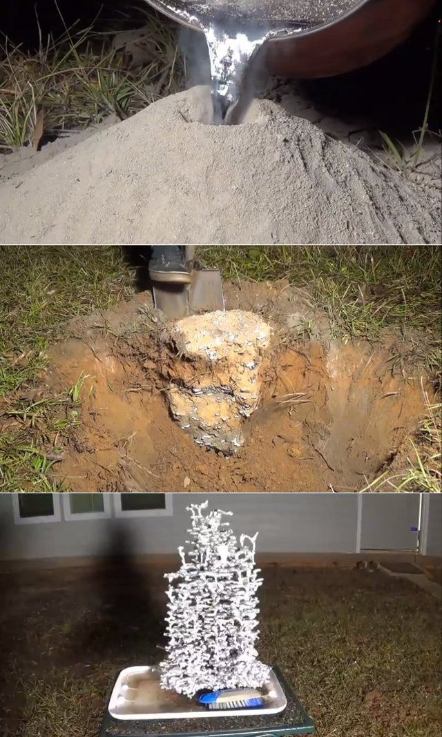 Casting A Fire Ant Colony's Tunnels w/ Molten Aluminum | beautiful