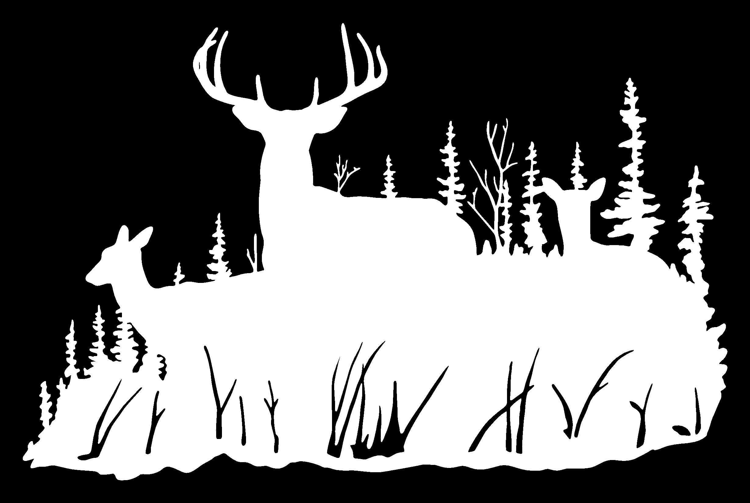 bow hunter Google Search Hunting decal, Deer family