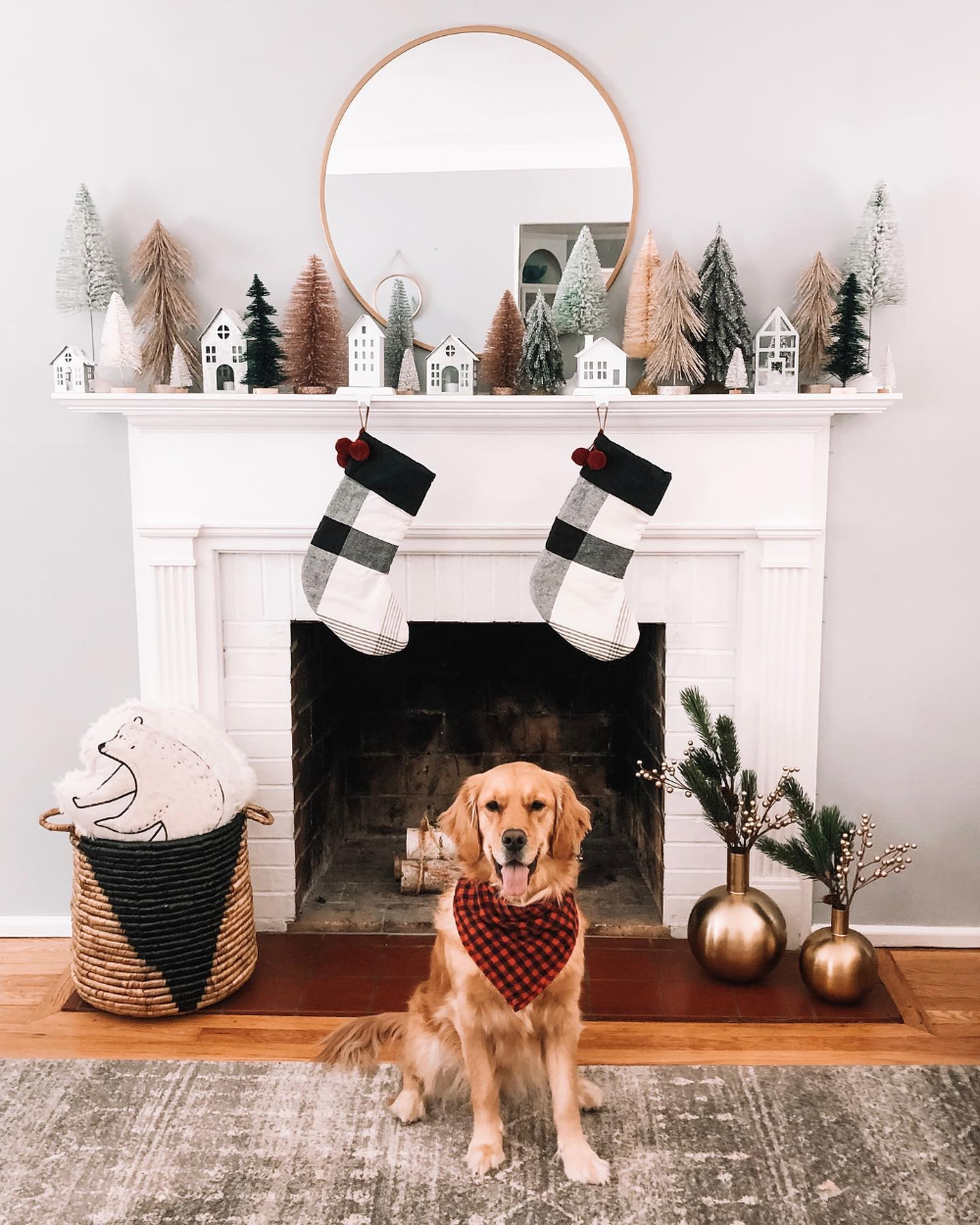 Dear Santa, all I want for Christmas is to be a target doggy model. Love, Emmy ️���� ......#target #targetstyle #goldensofinstagram #goldenretrieversofinstagram #dogsofstlouis #dogsofinstagram #goldens_ofinstagram #goldenretrieversworld #goldensofig