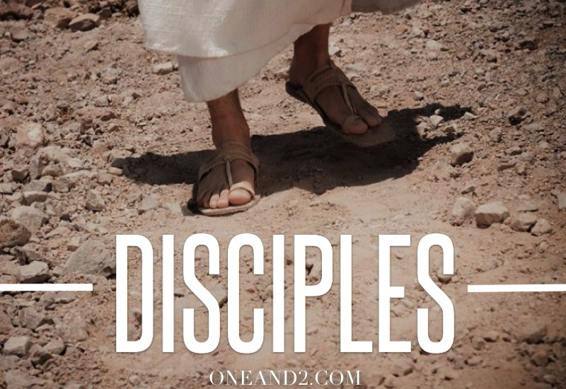 """Get ready for a week of seeing the Bible come alive like never before! Robbie Page introduces our new series, """"Disciples,"""" today on ONEAND2.COM, bringing home Matthew 28:18-20 for you and those around you. It's a new week, it's a new day, go READ and SHARE and watch what happens!"""