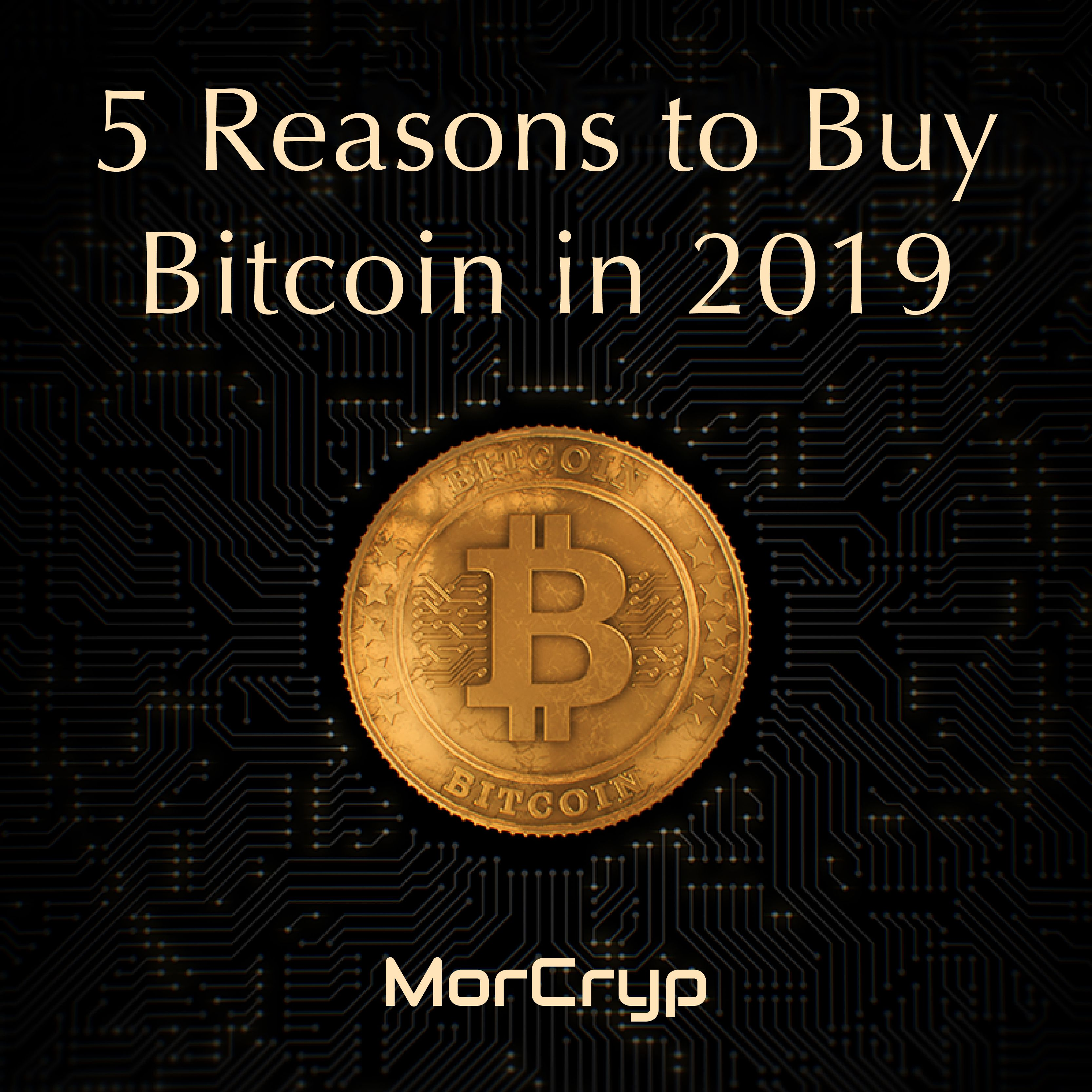 Why To Buy Bitcoin In 2019 Buy Bitcoin Bitcoin Where To Invest