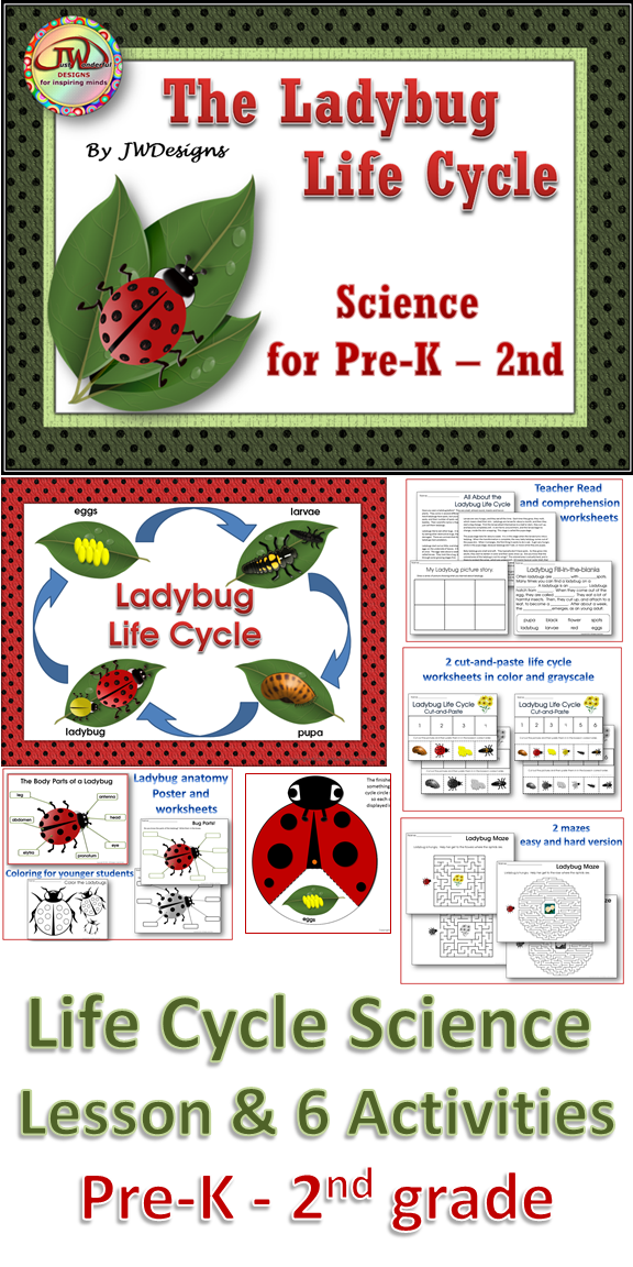 Life cycles ladybug life cycle unit with craftivity this is a life cycle science pack with posters a lesson comprehension worksheet life cycle ording cut and paste insect part labeling ladybug coloring ibookread Read Online
