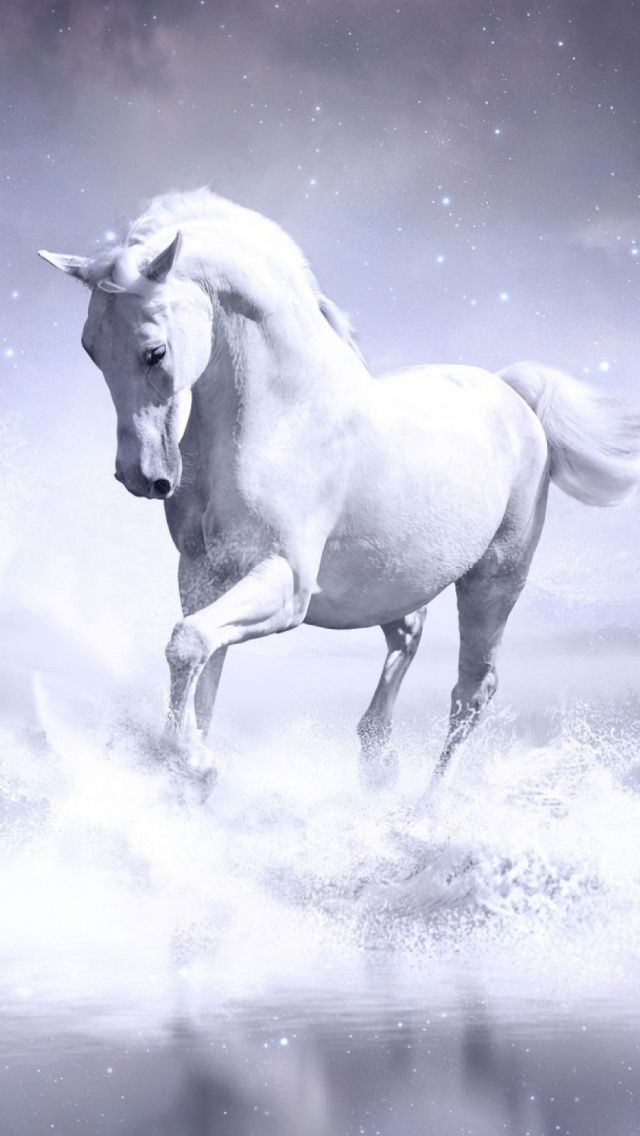 35 Cool And Awesome Iphone 6 Wallpapers In Hd Quality Horse Wallpaper Horses White Horse