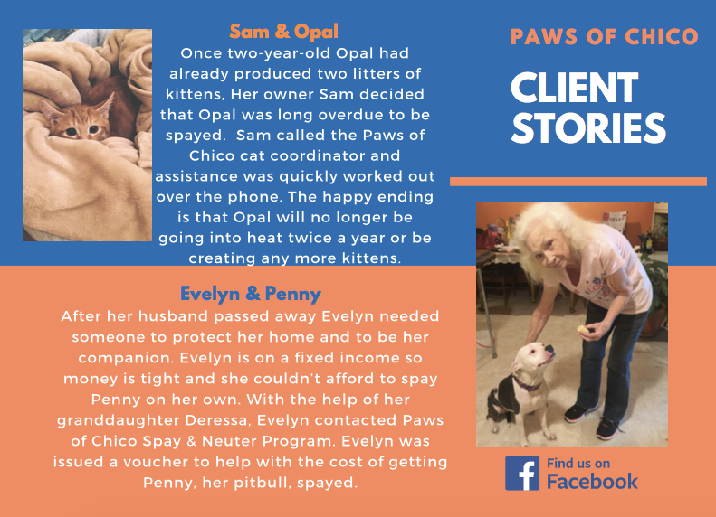 DK Weekly Community Spotlight Paws of Chico in 2020