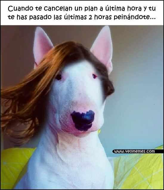 Pin On Memes En Espanol