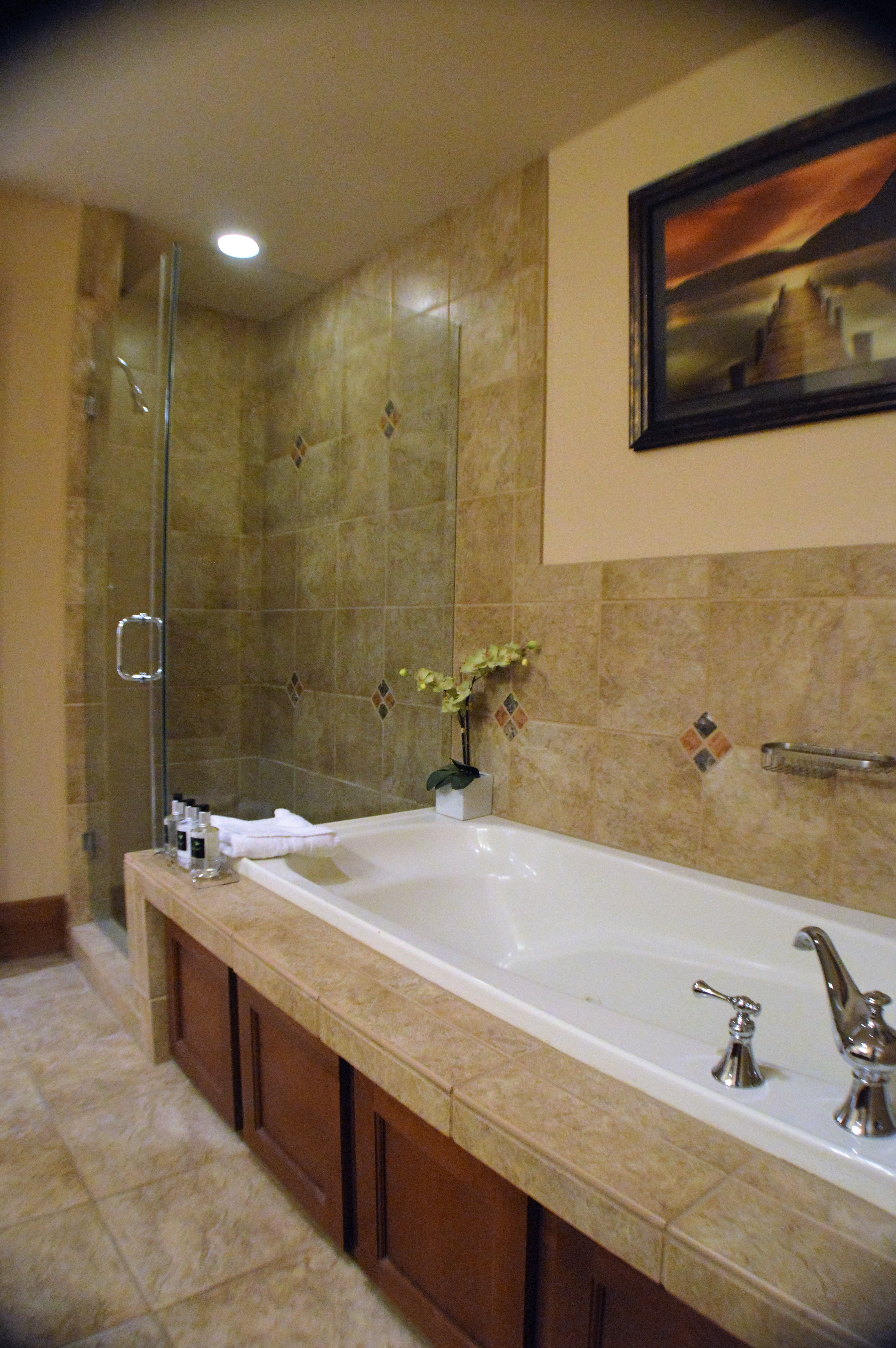 Lone Eagle 3020 bathroom