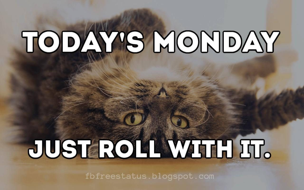 Monday Morning Quotes To Be Happy On Monday Morning Funny Monday Memes Monday Morning Quotes Happy Monday Quotes