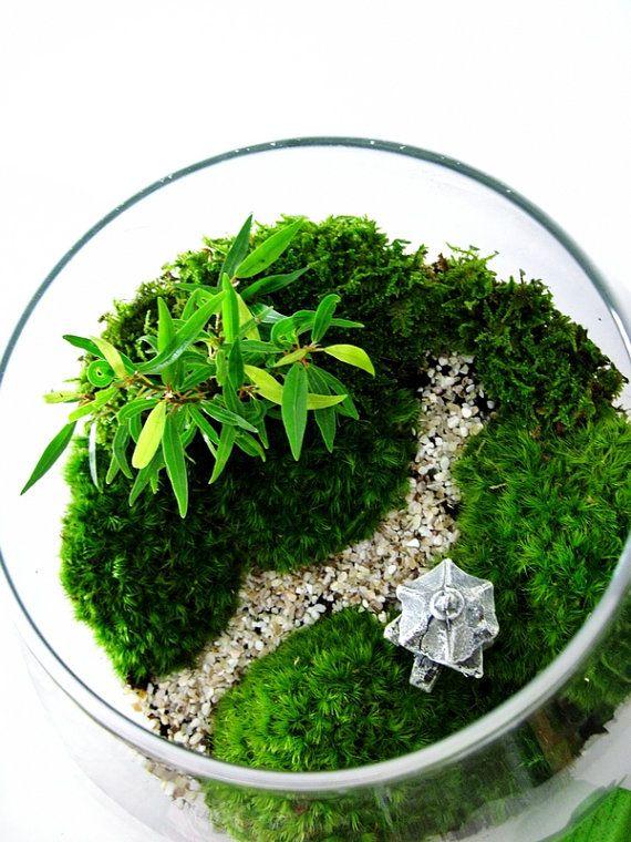 jardin paysage asiatique terrarium avec chemin par doodlebirdie terrariums pinterest. Black Bedroom Furniture Sets. Home Design Ideas