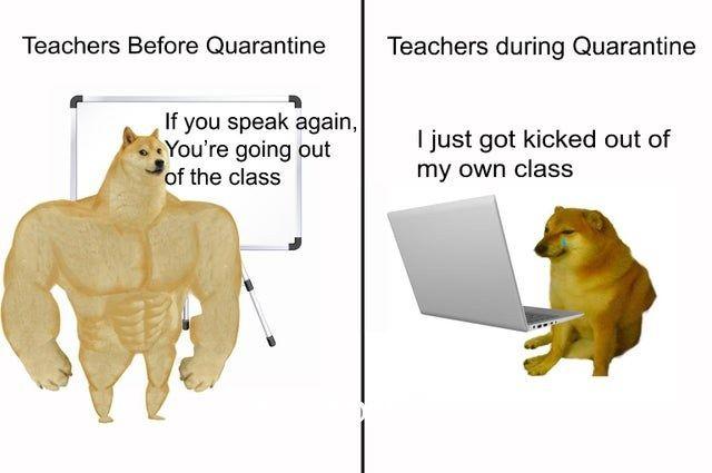 Fresh Memes Good Best Funny Dank Reddit Picture Facebook Instagram New Random Memes Funny Memes Funny Relatable Memes Stupid Memes