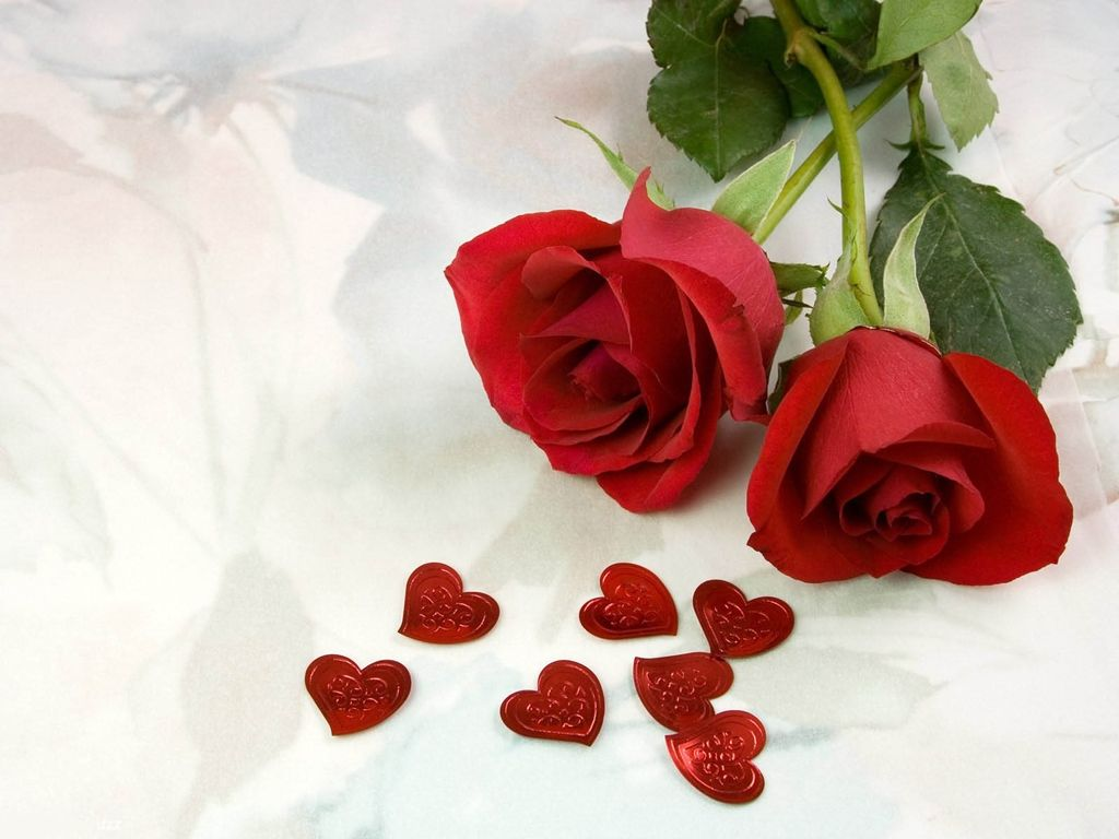 3d Love Rose Wallpaper Beautiful Red Roses Rose Day Wallpaper Flower Wallpaper