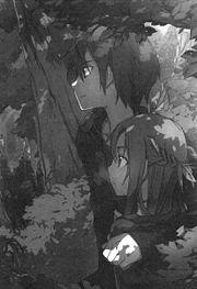 SAO light novel