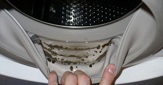 Medicinas Naturales: Cómo quitar el peligroso moho y olores desagradables de tu lavadora con 2 ingredientes