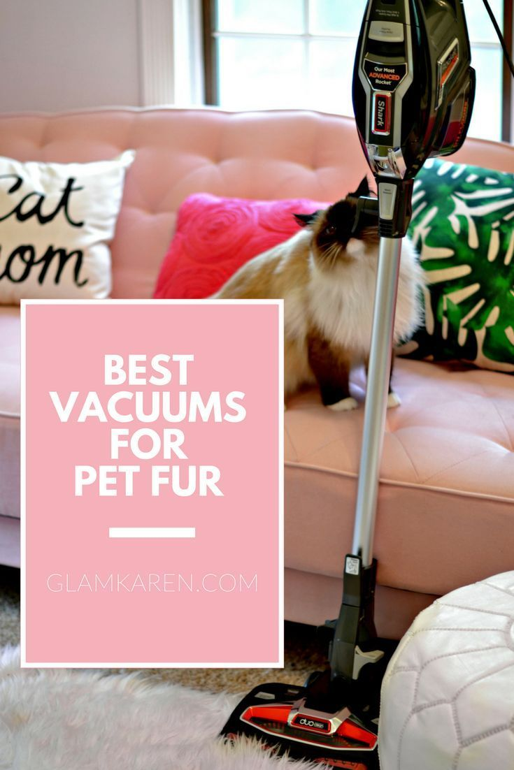 Why You Ll Want This Best Affordable Vacuum For Pets