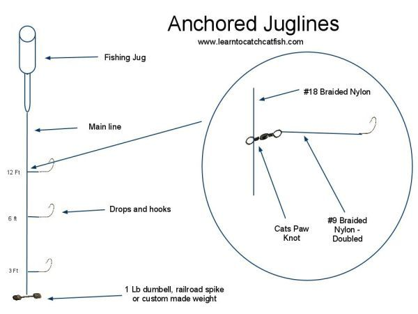 jug lines for catfish in pond about rigging free
