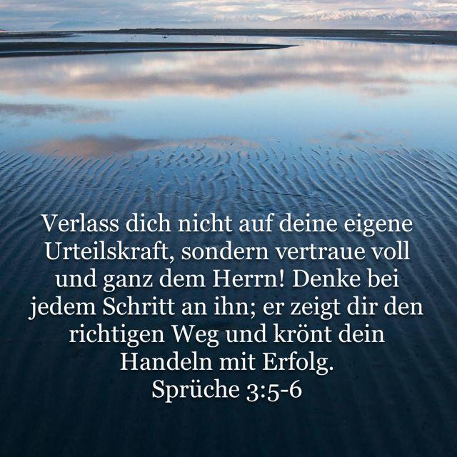 Spruche 3 5 6 Hoffnung Fur Alle Hfa Words Bible