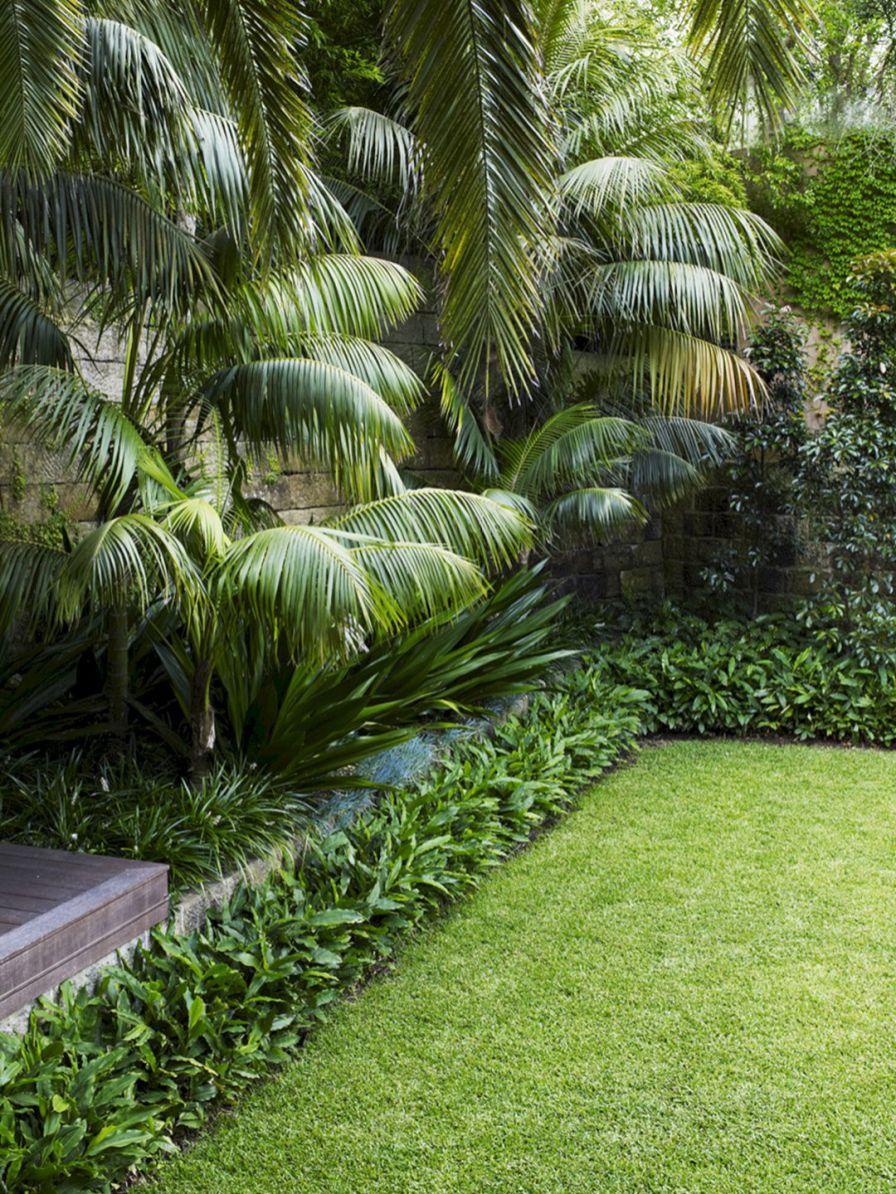 beautiful tropical front yard