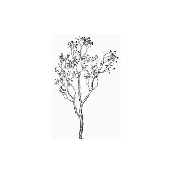 30in Silver Branch with Silver Berries ($16) found on Polyvore
