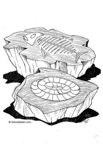 Fossil Coloring Pages Coloring Pages Fish Fossil